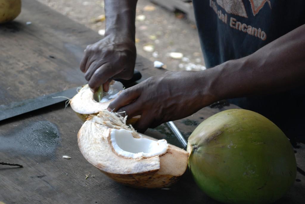 Tobago kokosnöt © Elisabeth Sjöberg Strand